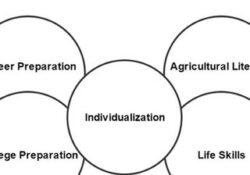 What is Agricultural Education PDF - Rural Development
